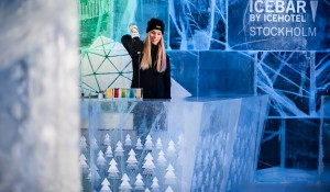 ICEBAR – A Northbound Adventure