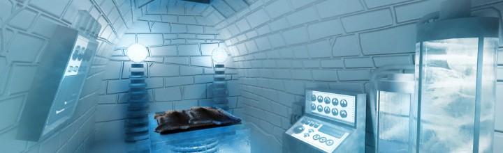 ICEHOTEL again!