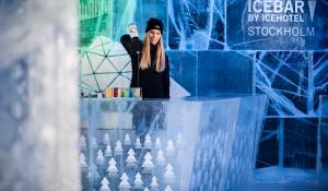 ICEBAR – A Northbound Adventure